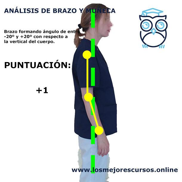 análisi postural ergonomía brazos postura neutra