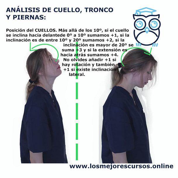 metodo rula postura cuello inclinado
