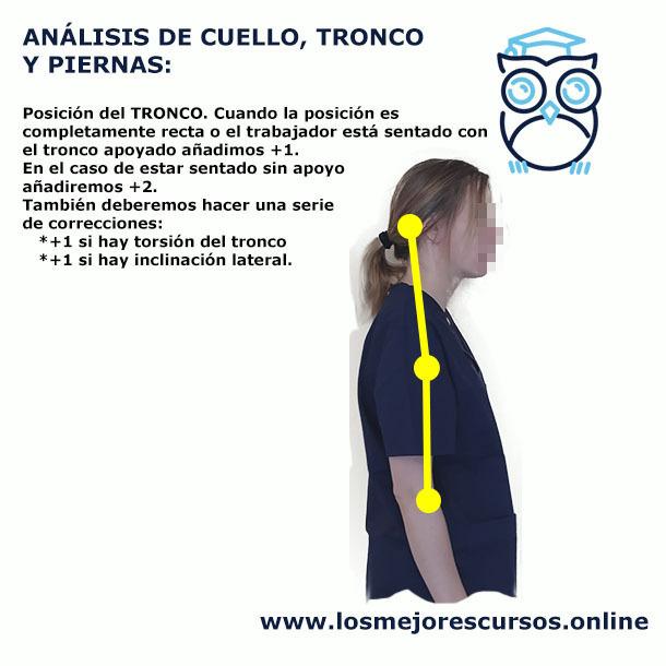 análisis postural tronco ergonomía