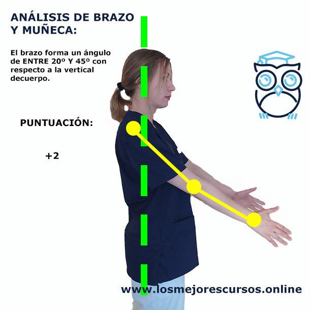 método RULA ergonomía brazos abajo