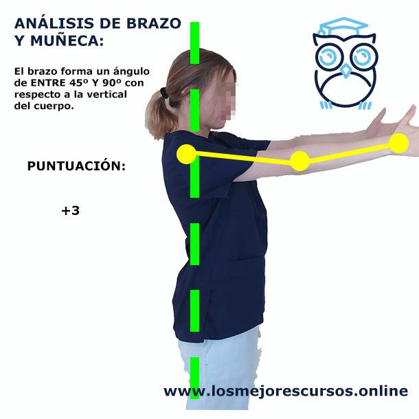 análisis postural rula brazos al frente