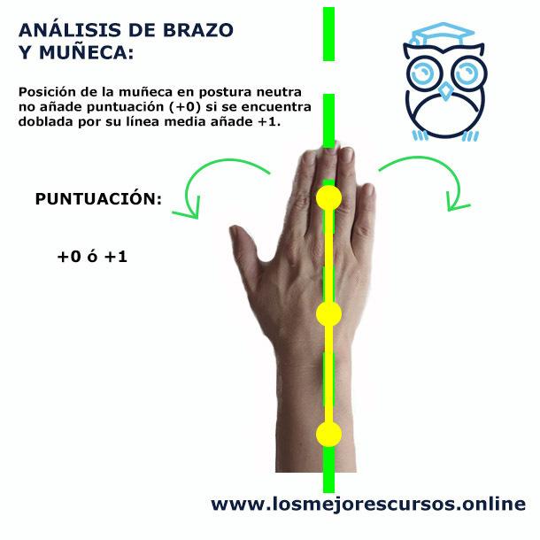 análisis ergonómico postural de la mano y muñeca